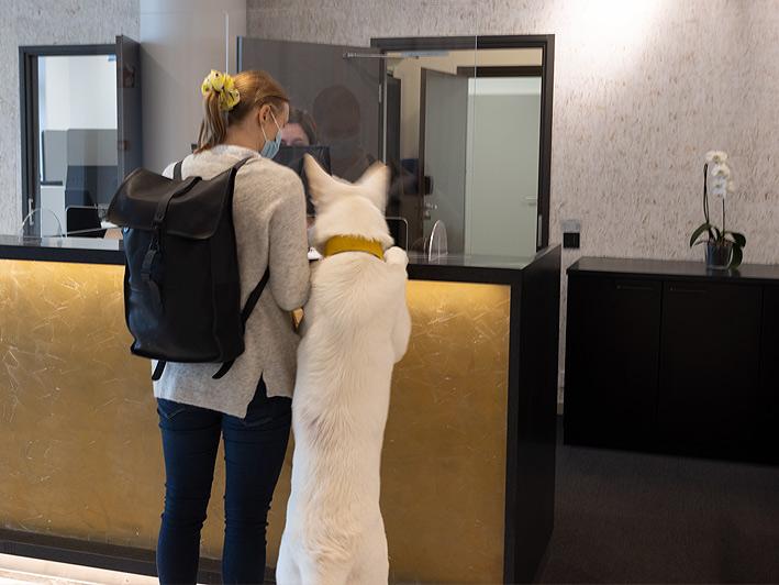 Nainen ja koira tulossa majoittumaan Hotel Mattsiin.